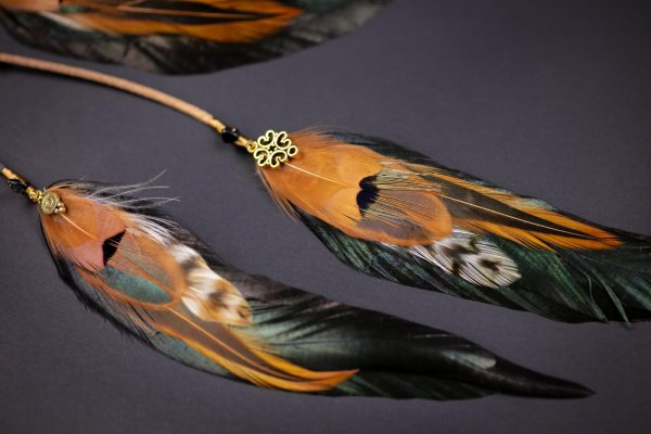 Five Feathers Black & Gold Feather Hair Clip